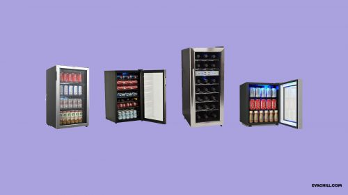 10 Best Beverage Refrigerators for Hot Summers in 2019
